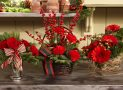 5 Tips for Using Gorgeous Flowers at Christmas Time